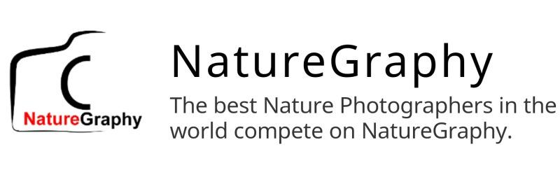 NatureGraphy Slogan